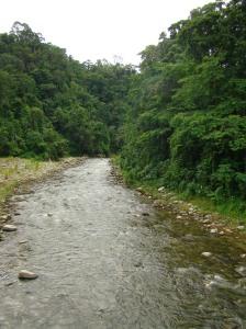 Río Cuyamel